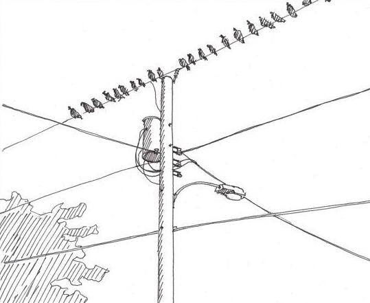 Landline Alarm Monitoring