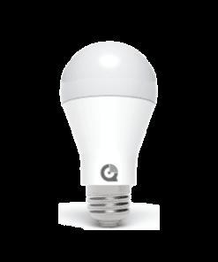 Qolsys-IQ-Lightbulb